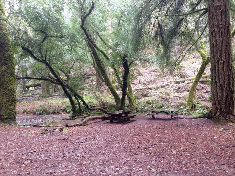 laura dell picnic area cataract falls trail