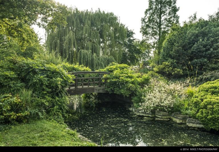 Queen Mary's Garden | © Mike T / Flickr
