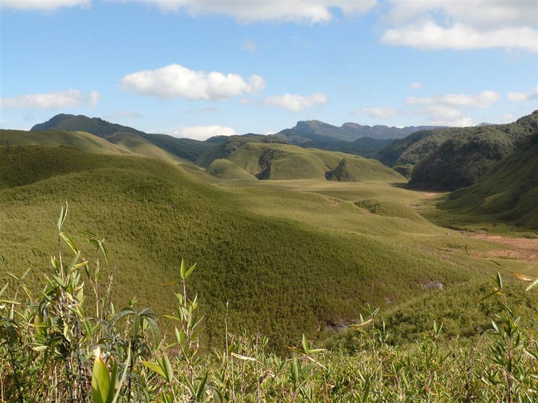 Dzukou Valley | Photo by Myongbyamba | Source: Wikimedia Commons