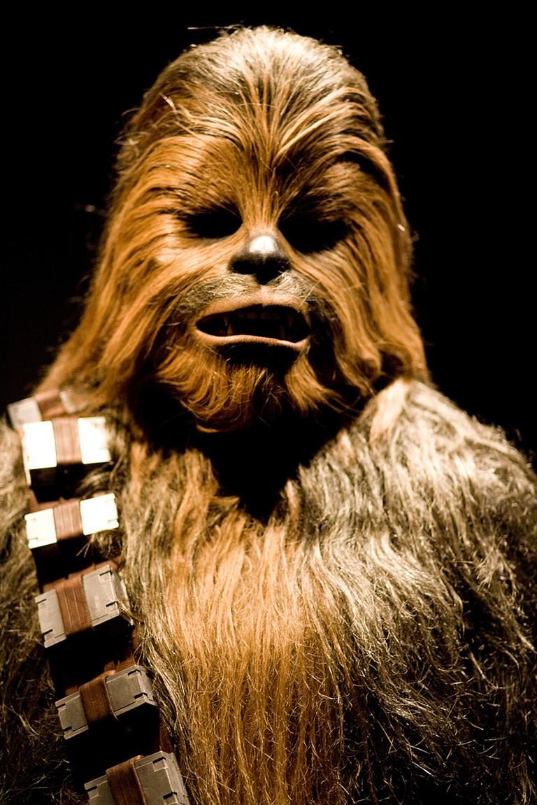 Chewbacca | ⓒ Alejandro Slocker/Flickr