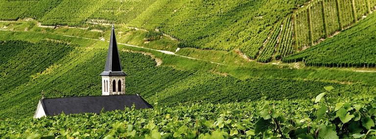 Les Vignes   © E. D'Ascoli Photographies:Flickr