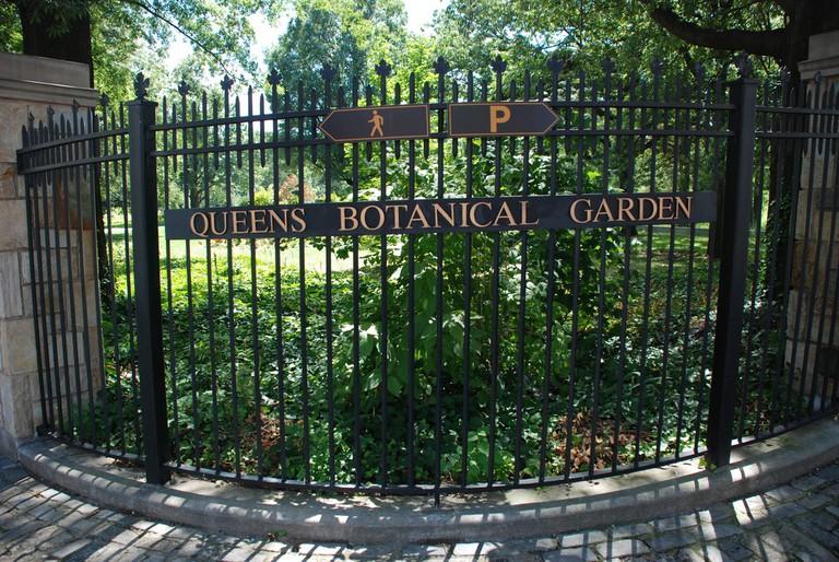 Queens Botanical Garden| © Joe Shlabotnik/flickr