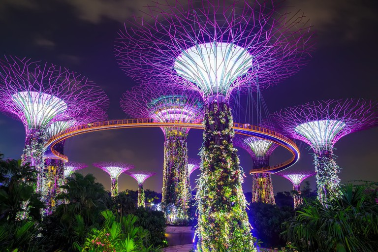 Supertrees of Garden by the Bay, Singapore
