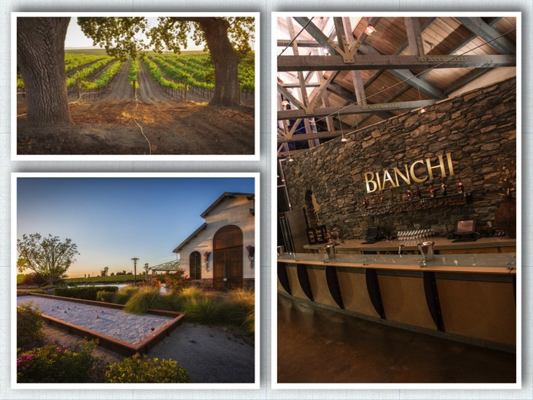 Photo courtesy of Bianchi Winery