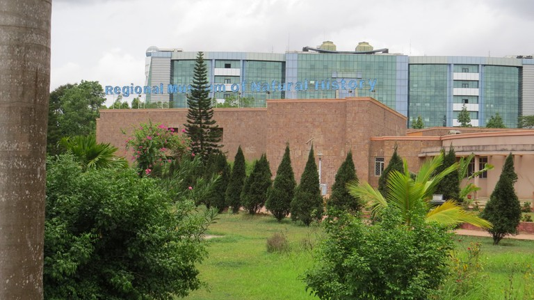 The Regional Museum of Natural History in the backdrop of glass towers of OCAC