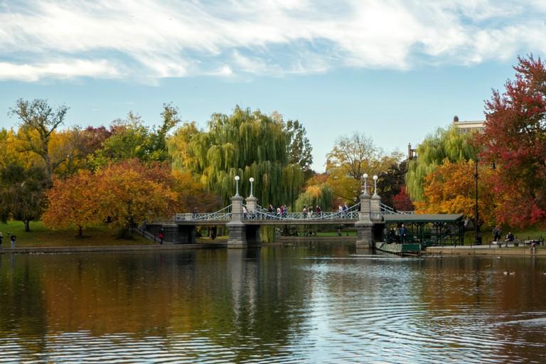 Boston Public Garden | © Rachael Elana Photography
