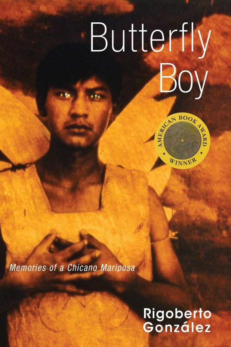 Rigoberto Gonzalez' Butterfly Boy (2006)   Courtesy of University of Wisconsin Press