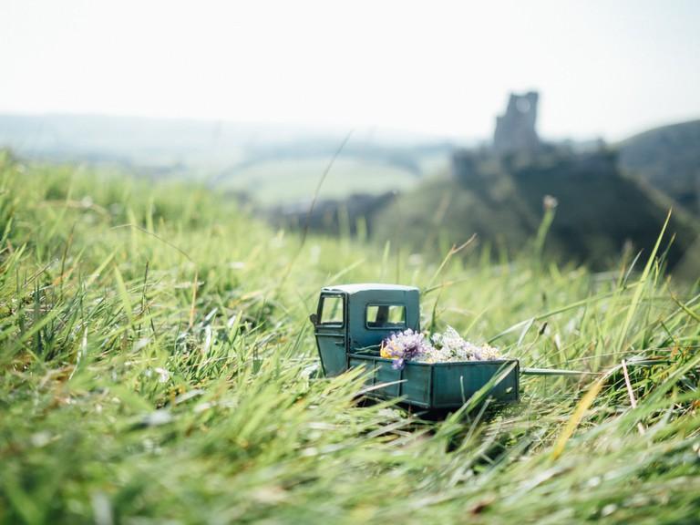 Wild flower delivery to Corfe Castle, Dorset | © Kim Leuenberger