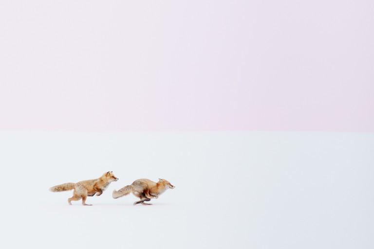 Hiroki Inoue / National Geographic Travel Photographer of the Year Contest