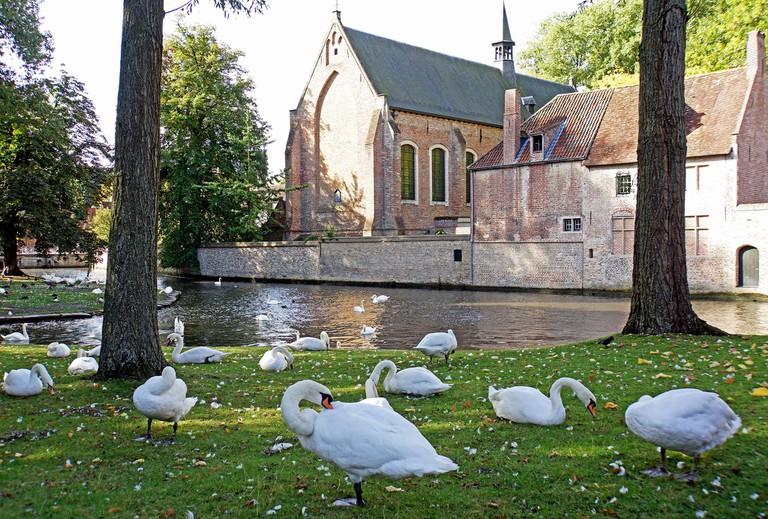 Bruges, where the displeased swans rule | © Dennis Jarvis/Flickr