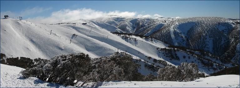 Mt Hotham, Victoria, Australia   © Tatters ❀ / Flickr