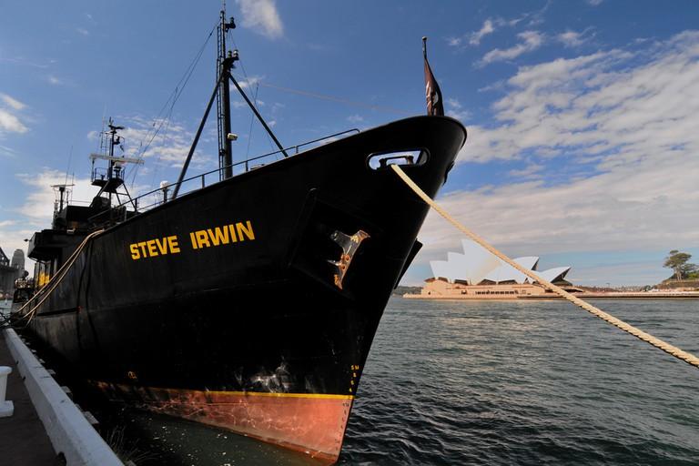 M/Y Steve Irwin   © L G / Flickr