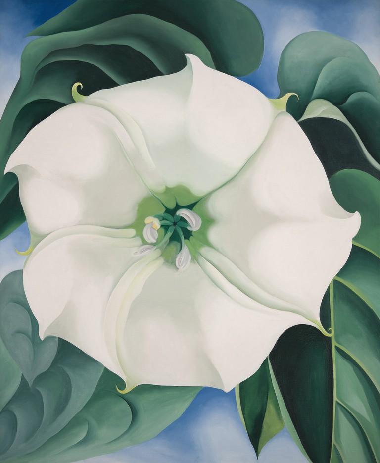 Georgia O'Keeffe - Jimson Weed/White Flower No.1, 1932, Crystal Bridges Museum of American Art, Arkansas, USA|©Edward C. Robison III/2016 Georgia O'Keeffe Museum/DACS, London
