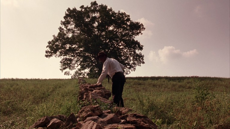 Red finds the field and tree (Castle Rock/Columbia Pictures)