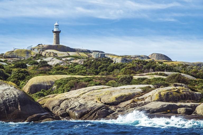 Montague Island, Narooma, NSW | Courtesy of Tourism Australia © Andrew Smith