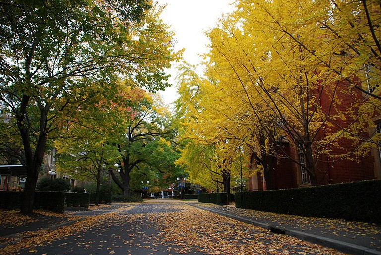 800px-Autumn_at_The_University_of_Melbourne