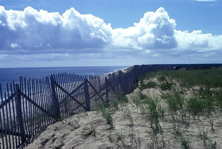 Cape Cod National Seashore   Tiner Ralph, U.S. Fish and Wildlife Service / Wikimedia Commons