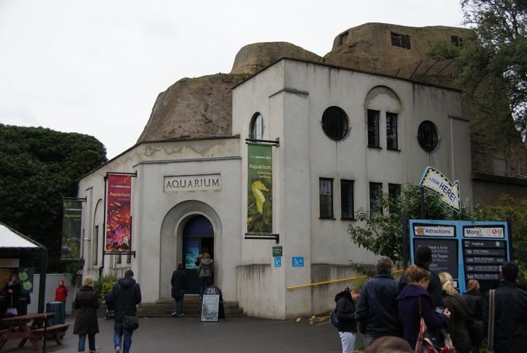 London Zoo Aquarium| ©Chris Sampson/Wikicommons