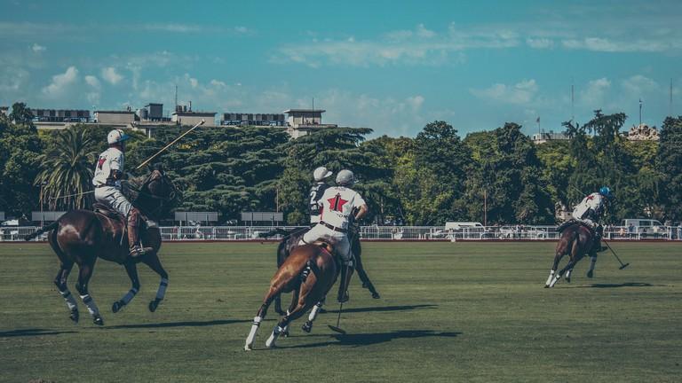 Polo in Buenos Aires |©pixabay.com