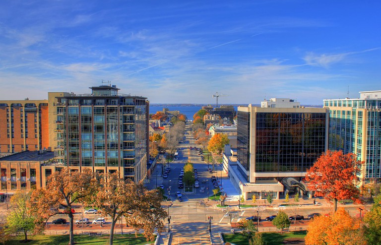 Madison, courtesy of Pixabay