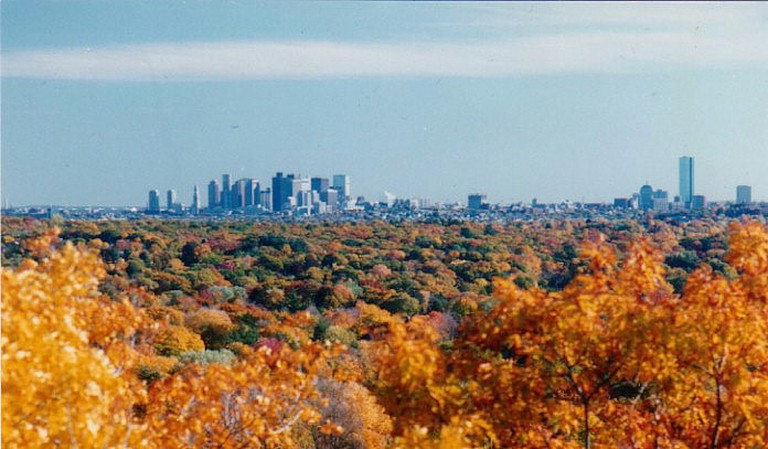 View of Boston from Great Blue Hill|©Rebecca Kennison/WikiCommons