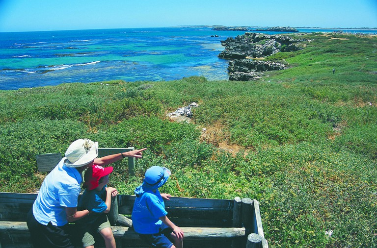 Bird watching | Courtesy of Tourism Western Australia