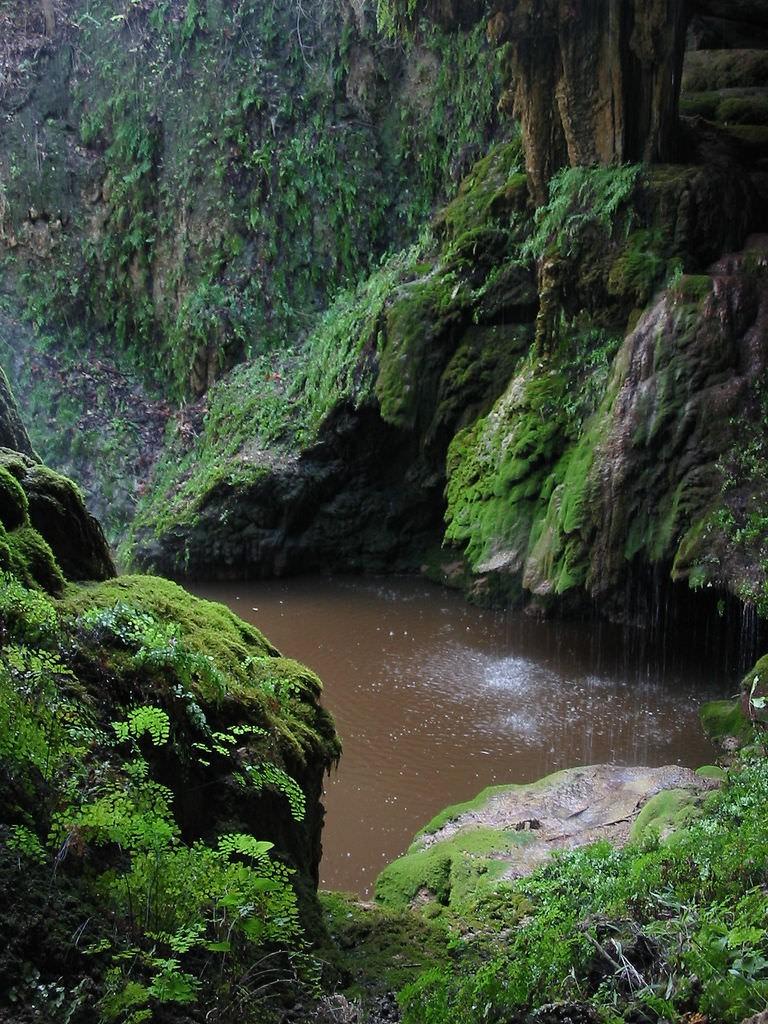 West Cave Preserve © Vicki Mitchell/Flickr
