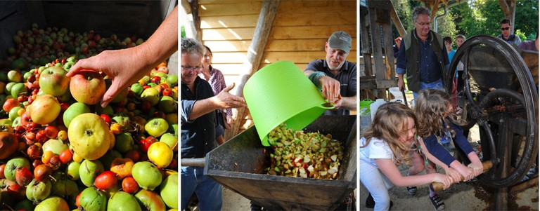 Apple festivals at the National Trust