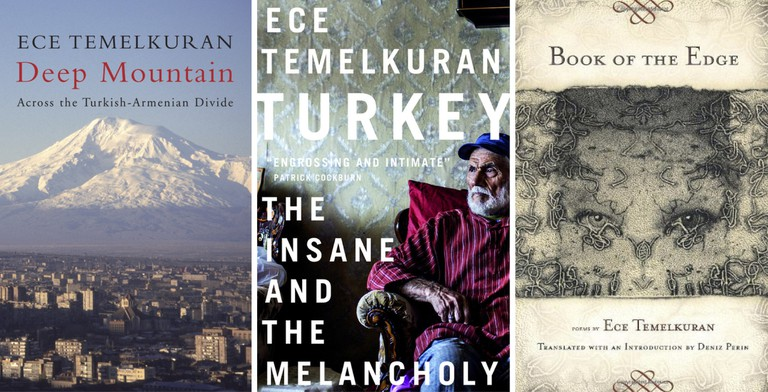 The three works by Ece Temelkuran currently available in English