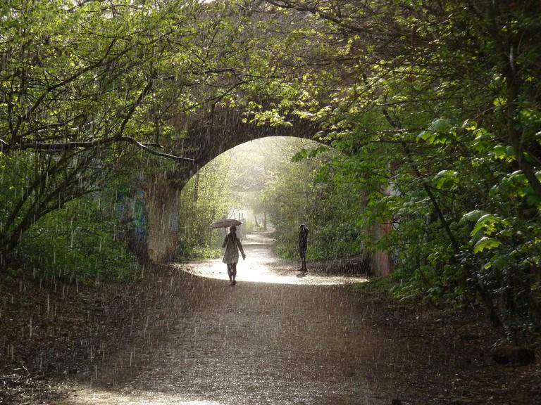 Parkland Walk, North London|©Brian Adamson/Flickr