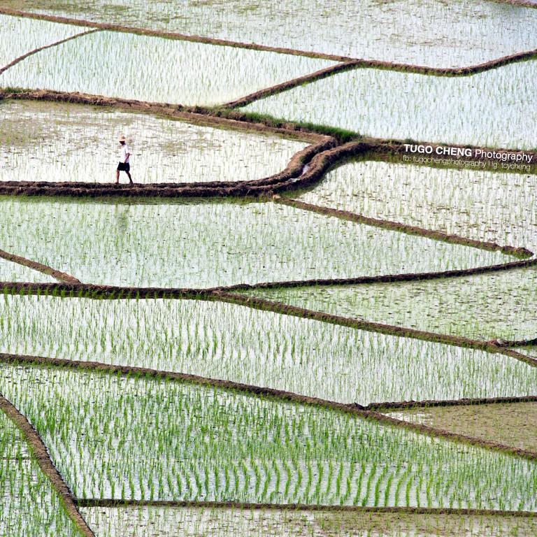 Taken in Yunnan |Courtesy of Tugo Cheng