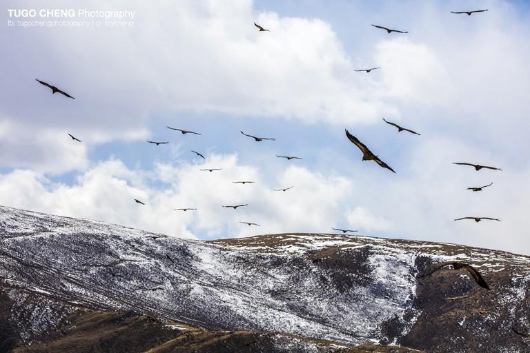 Taken in Tibet |Courtesy of Tugo Cheng