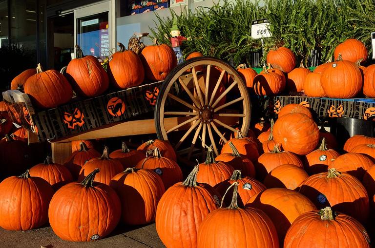 Pumpkins © Raysonho/Wikipedia