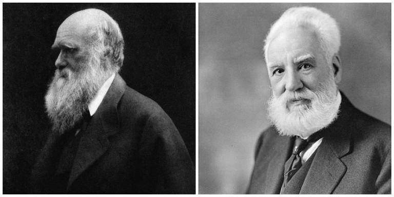 Charles Darwin   © WikiCommons // Alexander Graham Bell   © WikiCommons