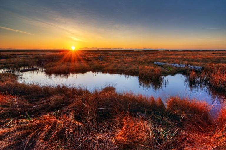 Wetlands in Arkansas | © West Coast Scapes/Shutterstock