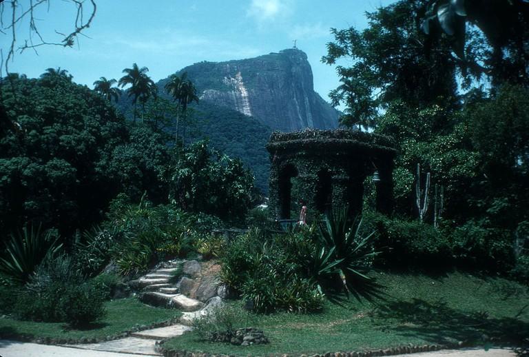 Rio's botanical gardens |© JERRYE AND ROY KLOTZ MD/WikiCommons