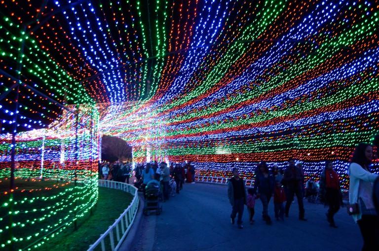 Trail of Lights © MarkScottAustinTX/Flickr