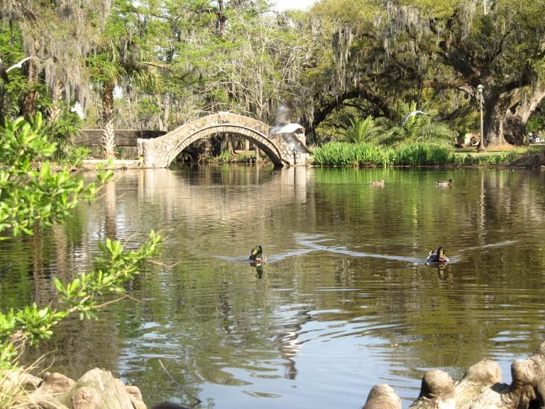 Lagoon with bridge and ducks, City Park, New Orleans│© Mr. Littlehand/WikiCommons