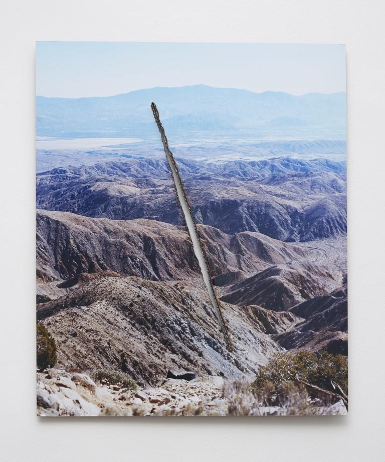 "Joshua Tree Steel Cut (Slash), 2015 C-print, steel 24"" x 20"" | Courtesy of Letha Wilson"