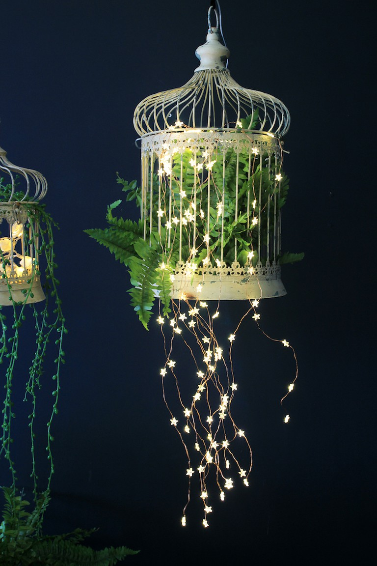 A vintage bird cage has been filled with ferns and fairy light