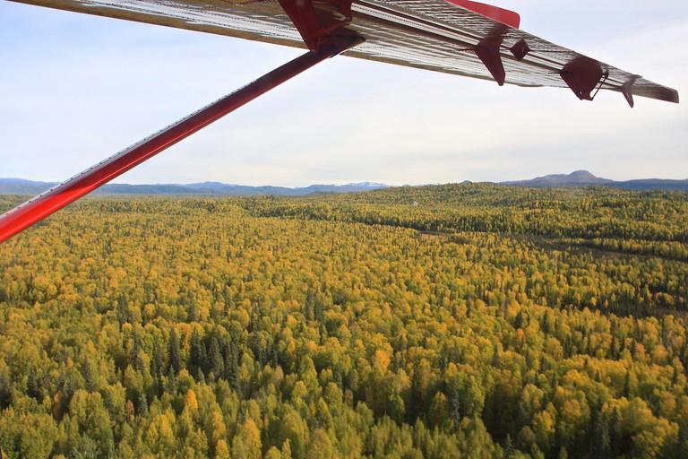 Takeoff from Talkeetna - Alaska   © TravelingOtter/Flickr