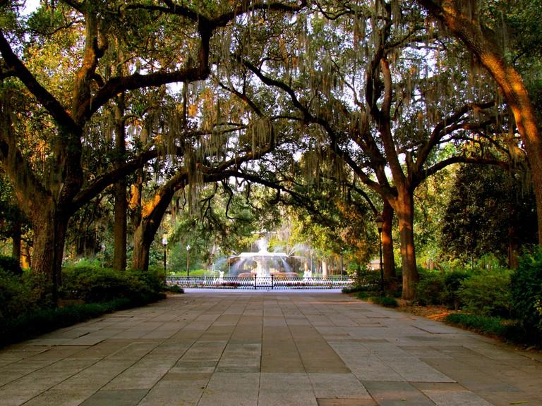 Savannah | © Jeff Gunn/Flickr