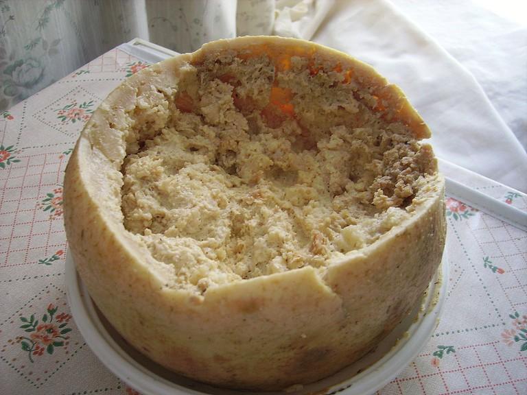 Casu Marzu cheese | © Shardan/WikiCommons