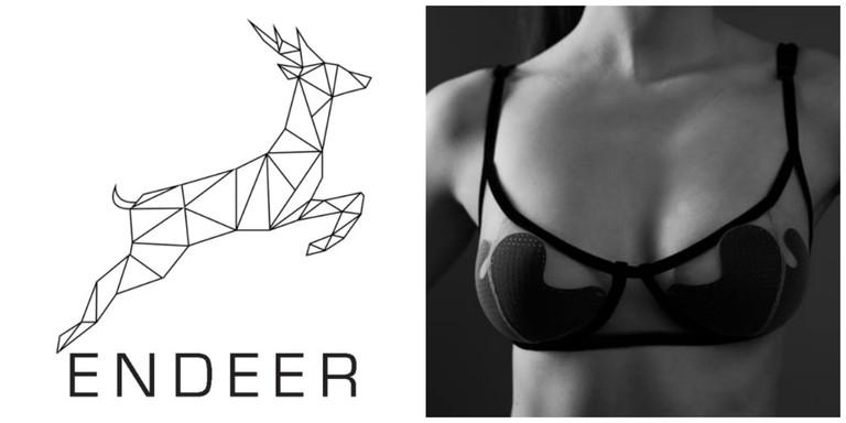 Endeer logo and intelligently designed bra │ Courtesy of Endeer
