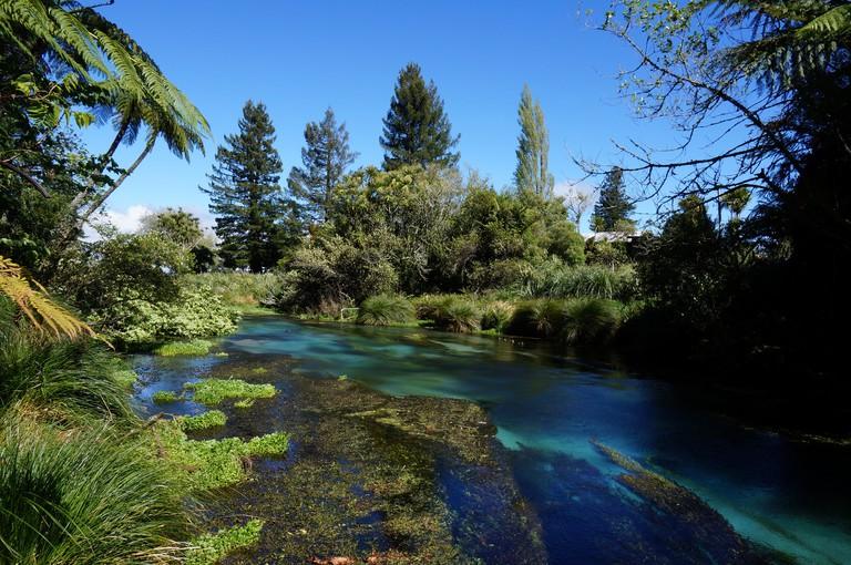 Crystal clear water at Hamurana Springs | © steven_n_maher/Flickr