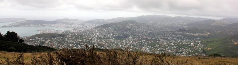 View from Mount Kaukau, Wellington | © Gabriel Pollard