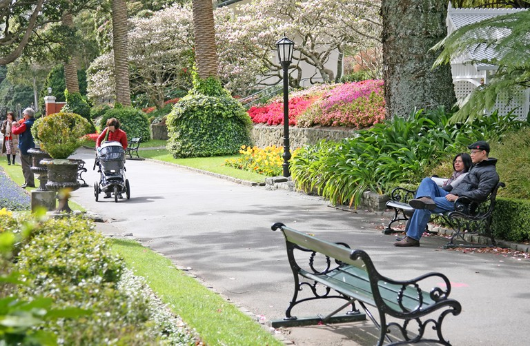 Wellington Botanic Garden   © Sydney Struwlg/Flickr