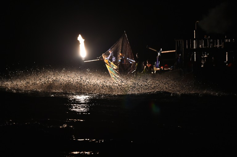 Sardines are attracted to the fire | © Seven Nich / Flickr