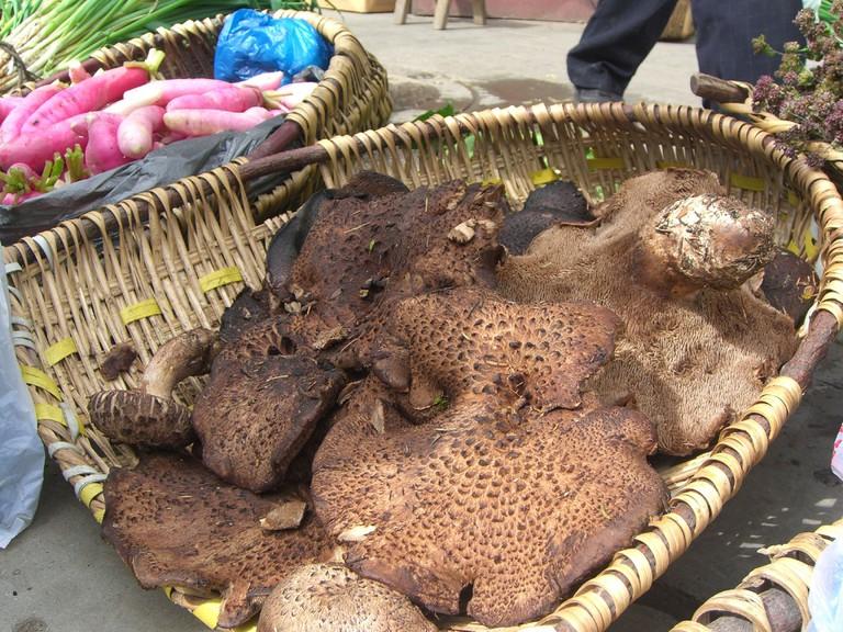 Wild Mushrooms at Songpan street market|© Alpha/Flickr
