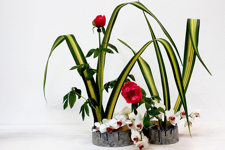 Ikebana | © Manuel/Flickr